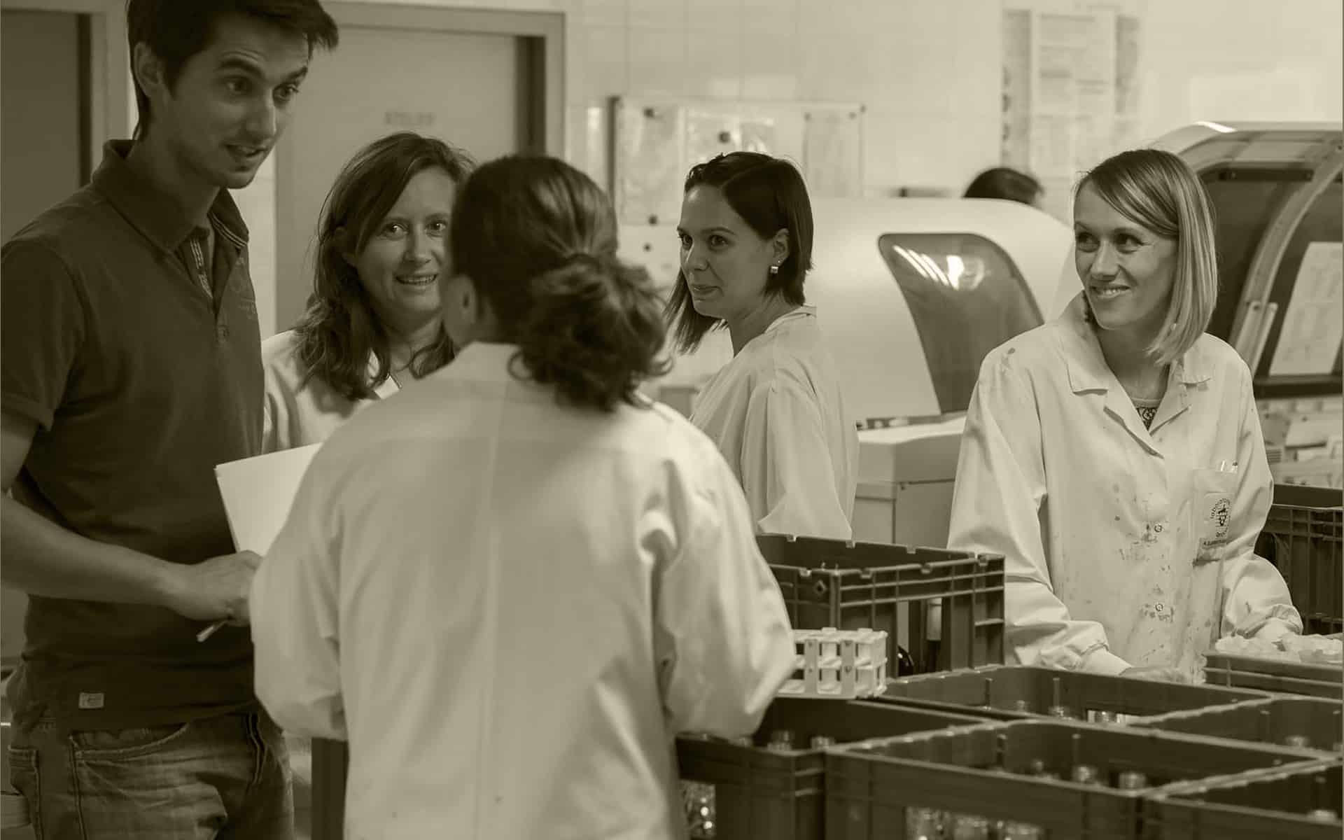 Slide 3 // Une équipe dynamique et créative pour une approche rigoureuse des vins